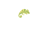 Capture Studio Roma - Video Production & Streaming
